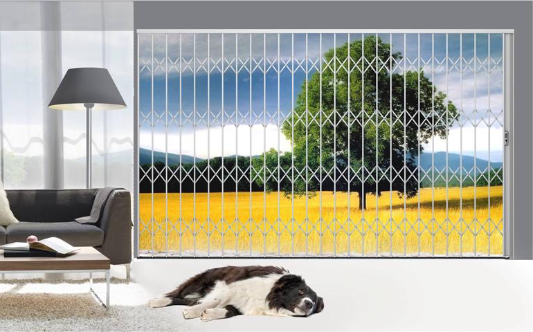 Xdoor-Landscape-Security-Door